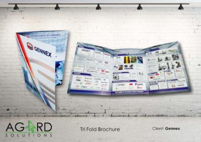 Print Advertising 7
